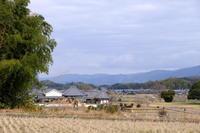 冬の景色飛鳥川原寺 - 平凡な日々の中で