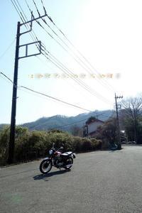 春一番かな? - 疾風谷の皿山…陶芸とオートバイと古伊万里と