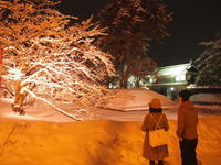 冬に咲くさくらライトアップ:弘前公園*2018.02.24 - 津軽ジェンヌのcafe日記