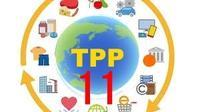 動き出すTPP11 参加希望国増加に中共顔真っ赤! - 大和のミリタリーまとめxxx