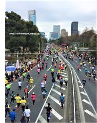 中古住宅の暮らしに感謝~東京マラソンと和太鼓~ - 身の丈暮らし  ~ 築60年の中古住宅とともに ~