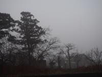 霧の朝 - あそびをせんとや ~あそびっこ~