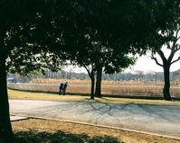 都立舎人公園の午後 風はまだ冷たいが春の陽射しがのんびり - 設計事務所 arkilab