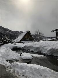 雪の白川郷へ♪ - From sugar box studio