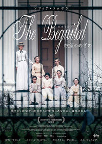 The Beguiled(2017) - *+*feather factor*+*