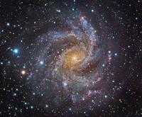 ケフェウス座の美しいフェイスオン銀河NGC6946 - 秘密の世界        [The Secret World]