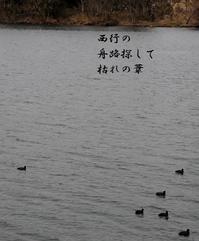 2月終 - 螺子花便り