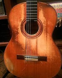 加藤崇之さんの古い方のギター君 - 蜂谷真紀  ふくちう日誌