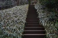 2.24 東慶寺 - 週末はソニーα6500でぶらり鎌倉・湘南散歩!