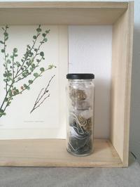 Mothers herb  花粉症サプリとハーブティーパック 終了しました - itononiwa