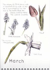 3月-春の到来は人生の心浮き立つ祭典のよう - ブルーベルの森-ブログ-英国のハンドメイド陶器と雑貨の通販