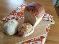 パンの神様、降臨 - パンもぐ手帖