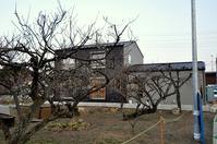 十字窓の家 いろいろ - 製作所的日常  かねこ建築製作所作業日誌