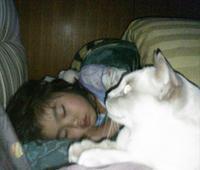 トンキニーズと娘 2 - MINKWIN Cattery &Pretty Aki