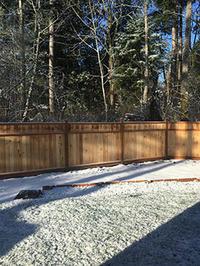 プレイデートで乗り切る冬休みー木曜日は前の学校の友達に会いに行く - くもりのち雨、ときど~き晴れ Seattle Life 3