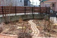 2月末の庭 - my small garden~sugar plum~