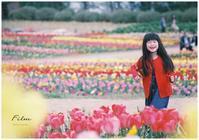 春の予感* - ココロハレ*