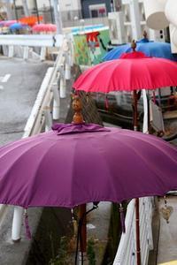 上桂(かみかつら)散歩写真 - 牛の散歩写真・関西版