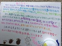 弥生1日、新たな一歩が始まります - 国語で未来を拓こう