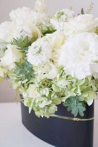 真っ白に、前向きに… - お花に囲まれて