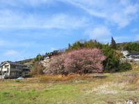 2018年03月02日・・・福山市金江町から - 空と雲,季節の風と光と・・・景色