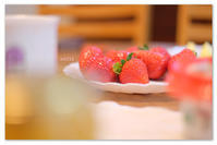 春は苺。 - Yuruyuru Photograph