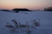 草木も眠りから覚める頃 - ekkoの --- four seasons --- 北海道
