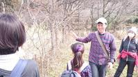 3/4ありのままの自分に出会う森・千年の森の自然観察会のお知らせ - えひめ千年の森をつくる会 イベント・活動のご案内