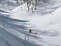 今年は大雪でしょ?ってよく言われますが、今年の南魚沼は普通の積雪ですね。 - じゅんりなブログ
