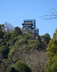 「犬山城」しゃちほこがついた!! - 名鉄犬山ホテル情報