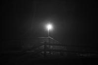 雪の夜(4cut) -     ~風に乗って~    Present