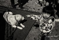 """""""Dogs and boys"""" - ~まきち写真工房~"""