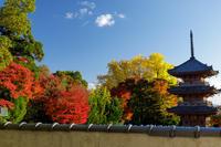京都の紅葉2017 色とりどりの宝積寺 - 花景色-K.W.C. PhotoBlog