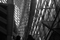 東京国際フォーラム(1) - M8とR-D1写真日記