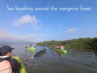 【Report】小浜島でマングローブカヤック - SAMのLIFEキャンプブログ Doors , In & Out !