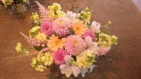 春が来た!! - 田舎の花屋繁盛(願望)記
