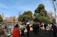 ■羽根木公園「せたがや梅まつり」18.3.3 - 舞岡公園の自然2