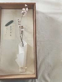 道明寺天満宮手づくりの市【cent & sousow】 - tukikusa note