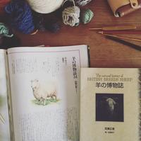 羊の博物誌 - soramame mitten
