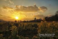 備中国分寺の夕景3/1 - 気ままな Digital PhotoⅡ
