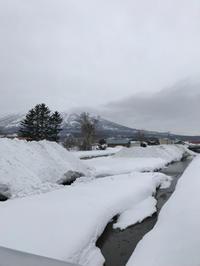 暴風雪のあと - 笑う門には福来たる