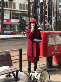 ※終了しました※第二十三回真実の水曜デモ - 捏造 日本軍「慰安婦」問題の解決をめざす北海道の会
