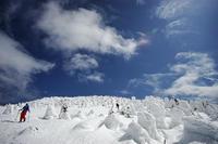 福島で スキー、盃 樹氷群 - いちにち