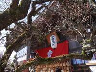 綱敷天満宮(福岡県築上町) - nabetatu52のブログ「ゆっくり・ゆったり」