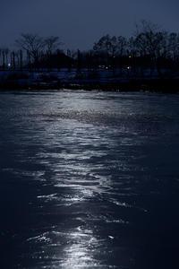 Ice in the Moonlight - Tom's  OM-D