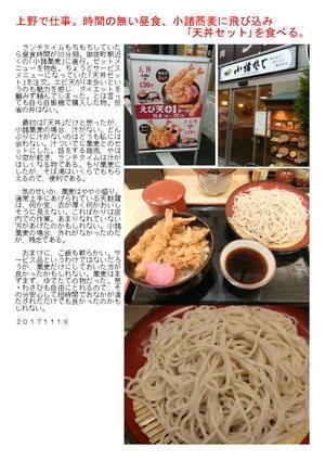 上野で仕事。時間の無い昼食、小諸蕎麦に飛び込み「天丼セット」を食べる。