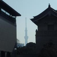 仁和寺の仏さまを見てきました。 - ご無沙汰写真館