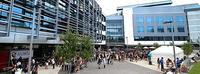 日本人に大人気♫ Worldwide school of English - ニュージーランド留学とワーホリな情報