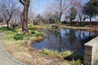 イングリッシュガーデンの小さな春Ⅲ - 季節の風を追いかけて
