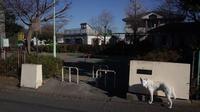 Vol.1307 綱島西一丁目公園 - 小太郎の白っぽい世界